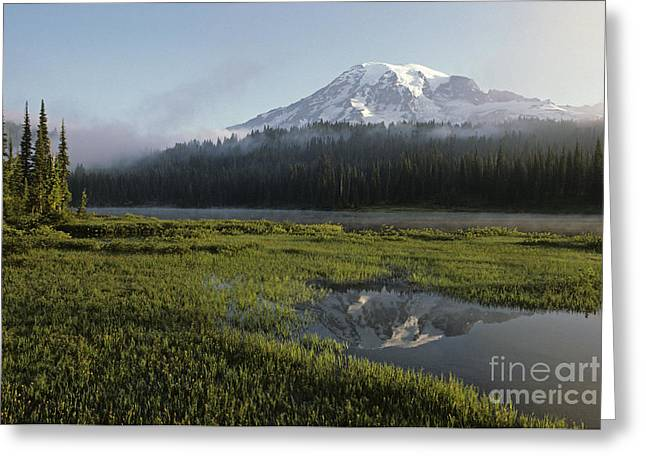 Pond In Park Greeting Cards - Mount Rainier Sunrise with Fog Greeting Card by Jim Corwin