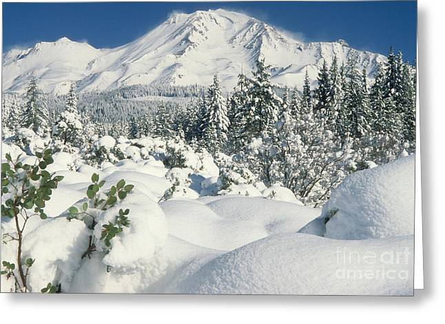 Snow-covered Landscape Greeting Cards - Mount Shasta Greeting Card by Richard and Ellen Thane