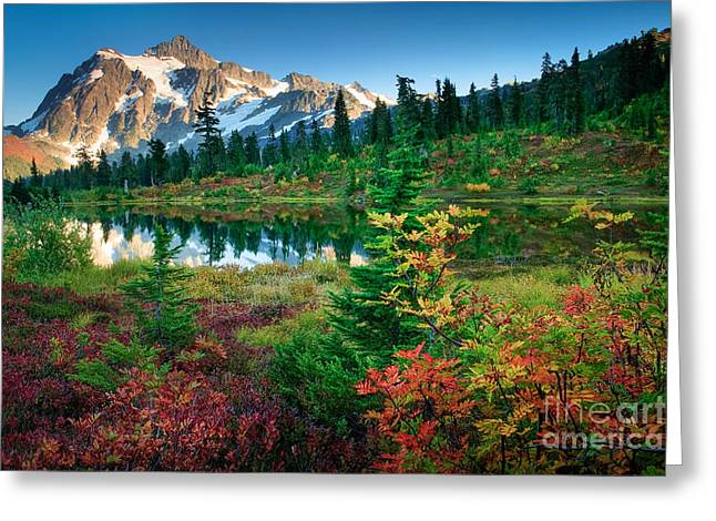 Mount Shuksan Fall Cornucopia Greeting Card by Inge Johnsson
