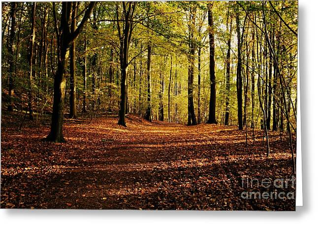 Limburg Greeting Cards - Mount St. Pieter Greeting Card by Brothers Beerens