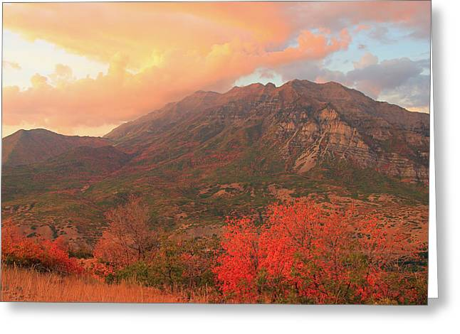 Amazing Sunset Greeting Cards - Mount Timpanogos from Squaw Peak Greeting Card by Johnny Adolphson