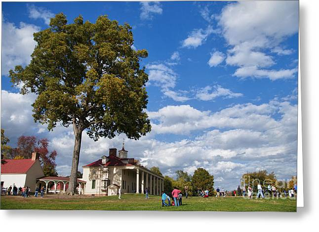 Restored Plantation Greeting Cards - Mount Vernon Day Greeting Card by Terry Rowe
