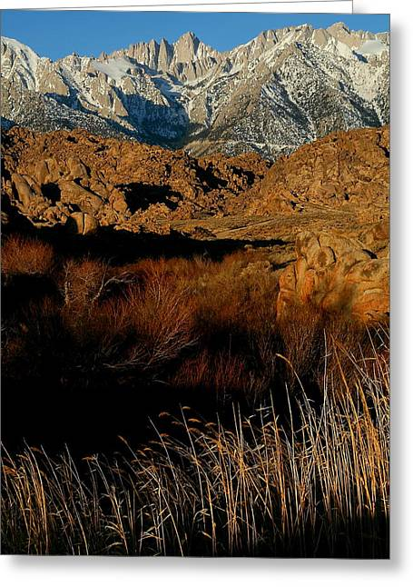 Kings Canyon Greeting Cards - Mount Whitney from the Alabama Hills in California Greeting Card by Jetson Nguyen