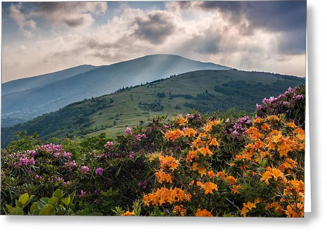 Crepuscular Rays Greeting Cards - Mountain Aflame Greeting Card by Rob Travis
