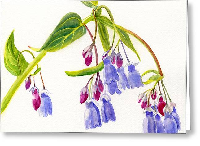 Mountain Bluebells Greeting Card by Sharon Freeman