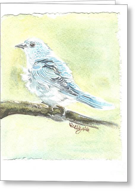 Bird Art Greeting Cards - Mountain Bluebird Greeting Card by Callie Smith