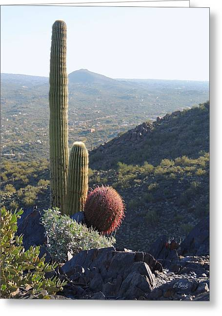 Cave Creek Cowboy Greeting Cards - Mountain Cactus Greeting Card by Gordon Beck
