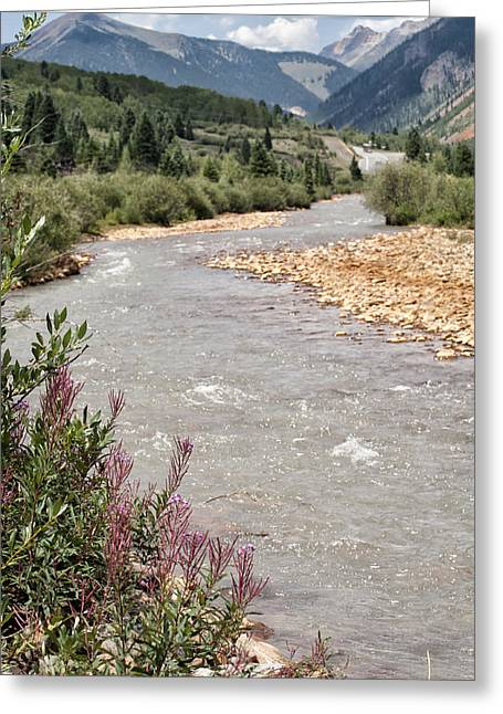 Perpetual Motion Greeting Cards - Mountain Creek Greeting Card by Melany Sarafis