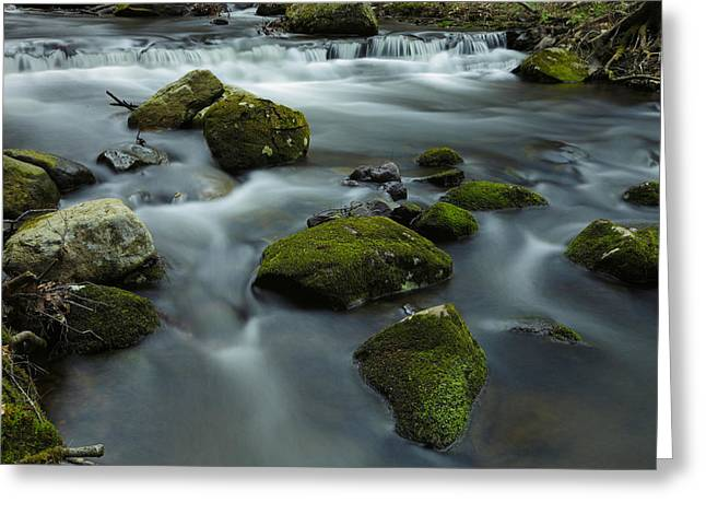 Creek Greeting Cards - Mountain Creek Greeting Card by Rick Berk