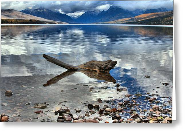 West Glacier Greeting Cards - Mountain Drift Log Greeting Card by Adam Jewell