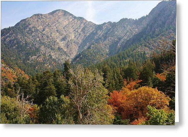 Sceneci Photography Greeting Cards - Mountain Escape Greeting Card by Bruce Bley
