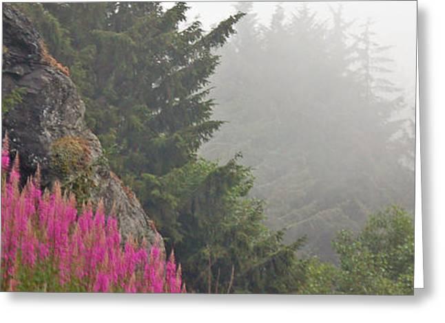 Mountain Fog Greeting Card by Chuck Flewelling