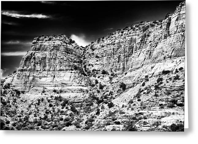 Coconino National Forest Greeting Cards - Mountain Hide Out Greeting Card by John Rizzuto