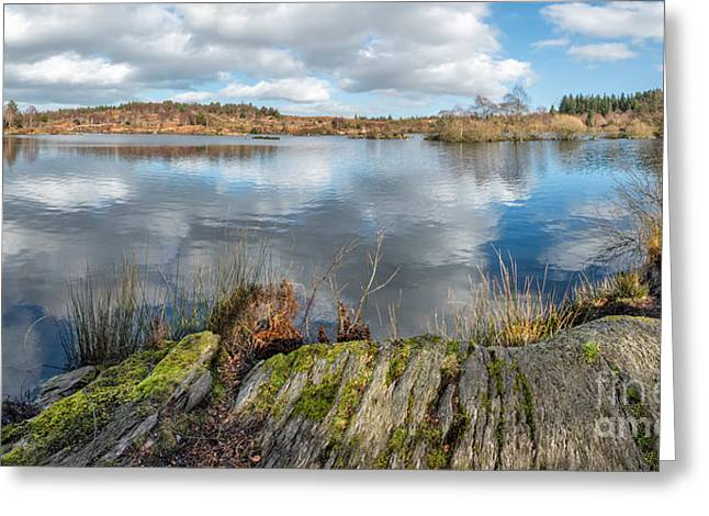 Moss Digital Art Greeting Cards - Mountain Lake Greeting Card by Adrian Evans