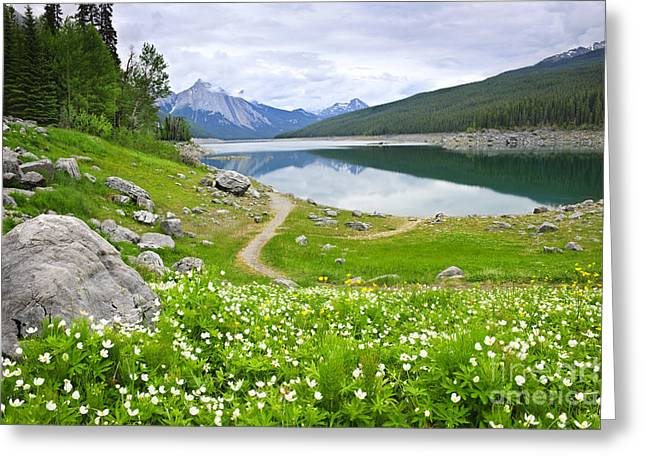 Jasper Greeting Cards - Mountain lake in Jasper National Park Canada Greeting Card by Elena Elisseeva
