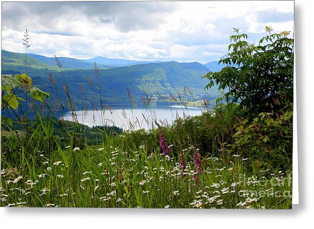 Mayfield Greeting Cards - Mountain Lake Viewpoint Greeting Card by Carol Groenen