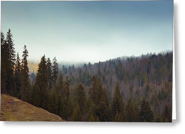 Mountain Landscape In Romania Greeting Card by Vlad Baciu