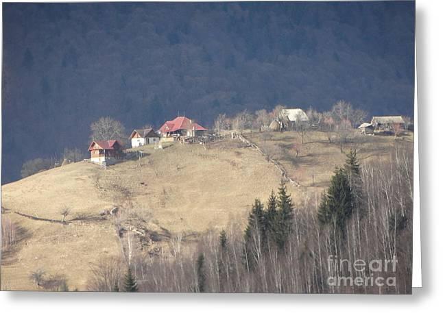 Mountain Life 2015 09 Greeting Card by Dan Marinescu