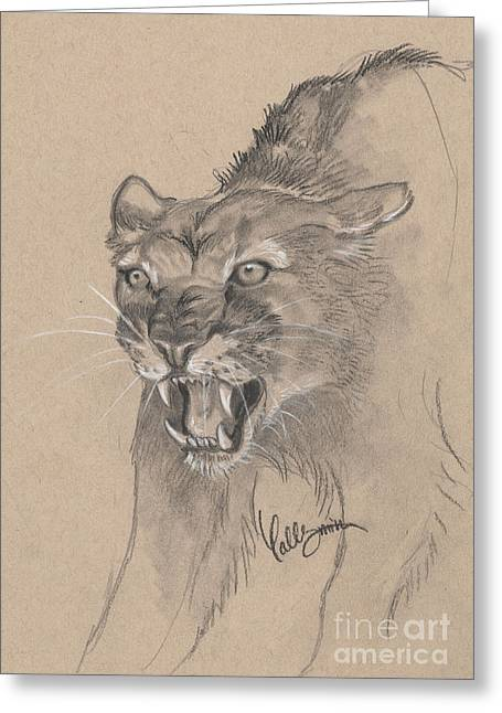 Growling Greeting Cards - Mountain Lion Sketch Greeting Card by Callie Smith
