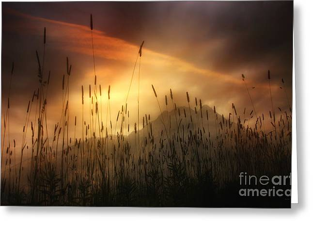 """nature Photography Prints"" Greeting Cards - Mountain Magic Greeting Card by Tom York Images"