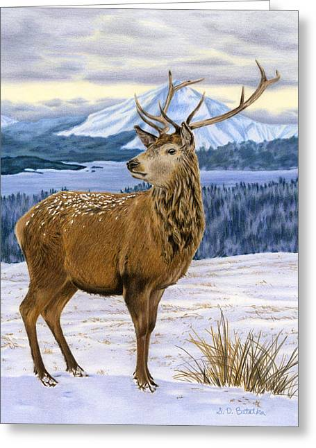 Deer In Snow Greeting Cards - Mountain Majesty Greeting Card by Sarah Batalka