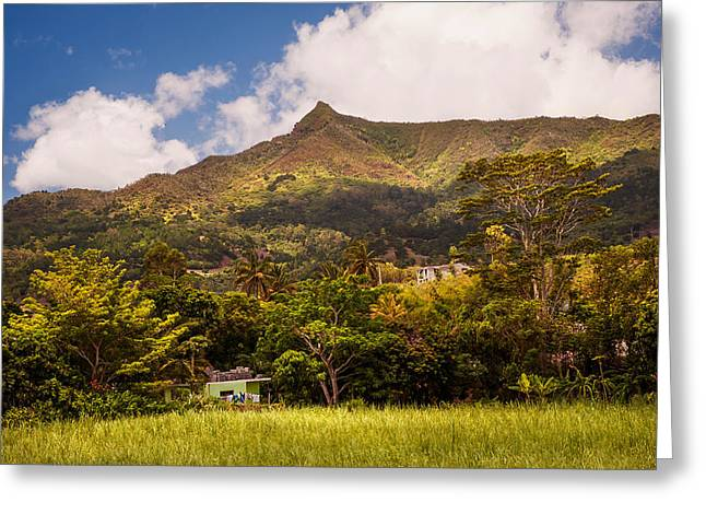 Travel Agency Greeting Cards - Mountain Mauritian Landscape Greeting Card by Jenny Rainbow