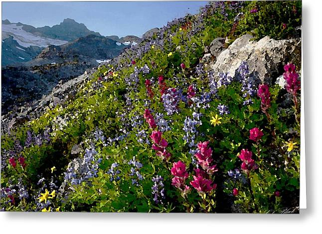 Cole Drawings Greeting Cards - Mountain Meadow Greeting Card by Cole Black