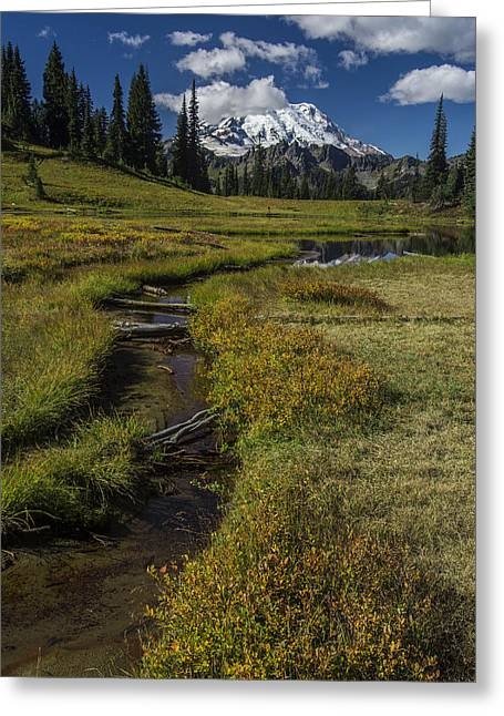 Public Issue Greeting Cards - Mountain Meadow Greeting Card by Mike Sedam