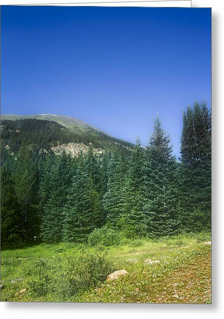 Mountain Morning Tranquility Greeting Card by Mark Andrew Thomas