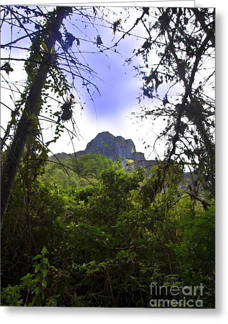 Spanish Peaks Greeting Cards - Mountain Overlooking San Fernando - Ecuador Greeting Card by Al Bourassa