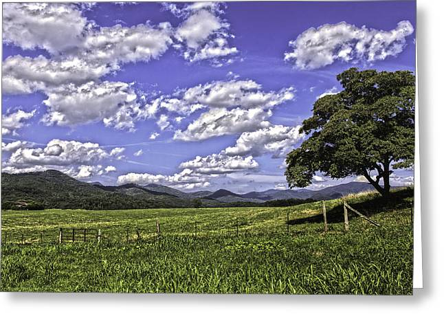 Franklin Farm Greeting Cards - Mountain Pasture Greeting Card by Kevin Senter