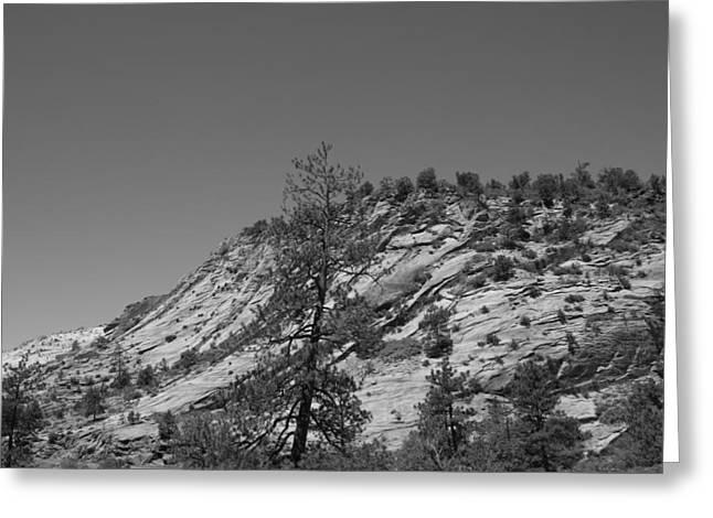 Mountain Path Greeting Card by Kimberly Oegerle