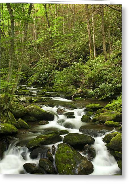 Rapids Greeting Cards - Mountain Rapids Greeting Card by Andrew Soundarajan