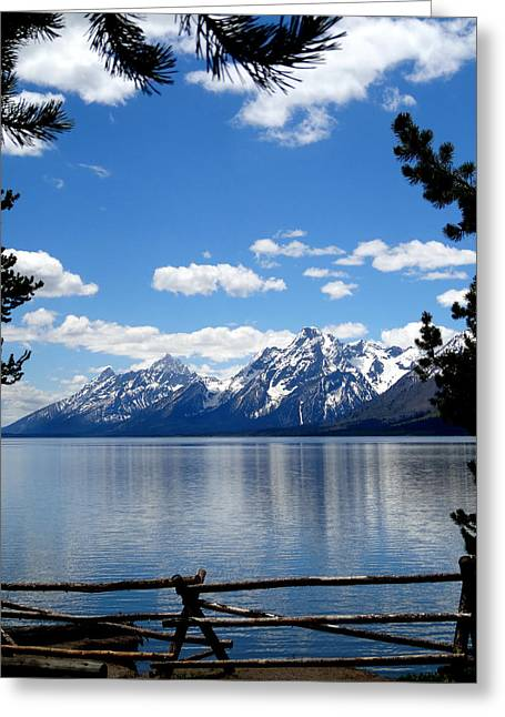 Tree Limbs Greeting Cards - Mountain Reflection On Jenny Lake Greeting Card by Dan Sproul