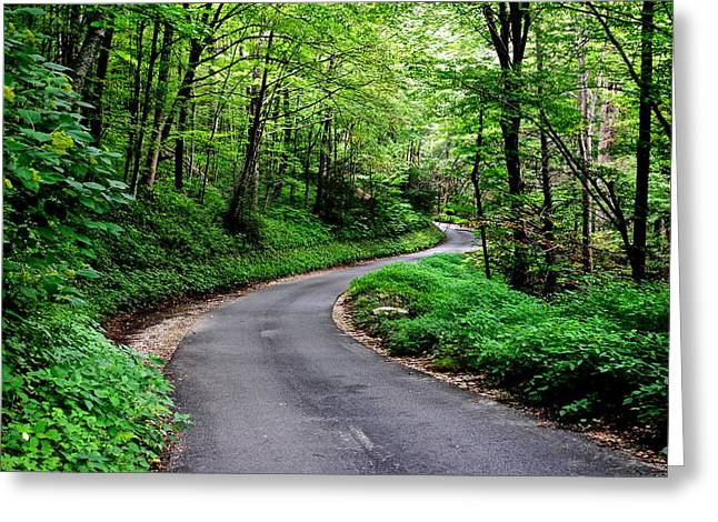 Weeping Greeting Cards - Mountain Road Greeting Card by Frozen in Time Fine Art Photography
