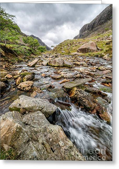 Stream Digital Greeting Cards - Mountain Stream Greeting Card by Adrian Evans
