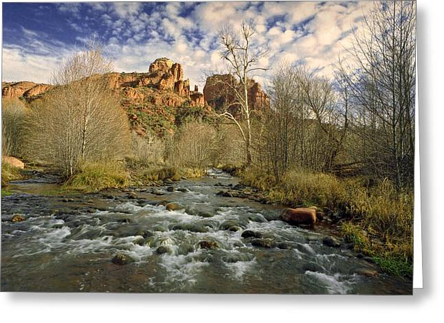 Cathedral Rock Greeting Cards - Mountain Stream by Cathedral Rock in Sedona Arizona Greeting Card by Randall Nyhof