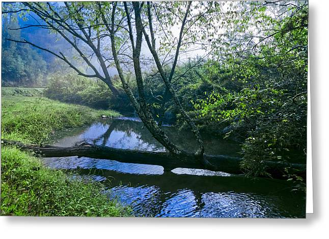 Tennessee Farm Greeting Cards - Mountain Stream Greeting Card by Debra and Dave Vanderlaan