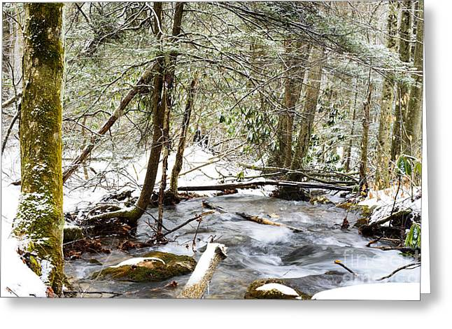Mountain Stream In Winter Greeting Card by Thomas R Fletcher
