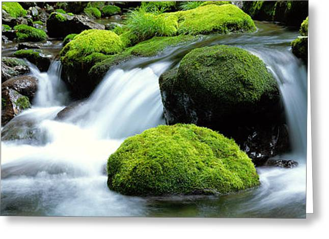 Mountain Stream Kyoto Japan Greeting Card by Panoramic Images