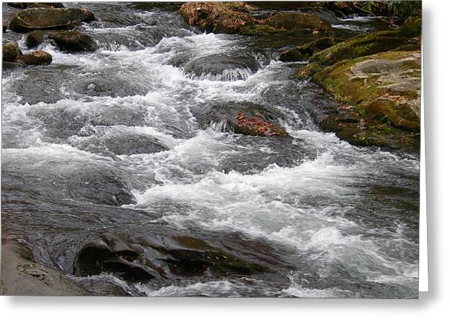 MOUNTAIN STREAM Greeting Card by Skip Willits