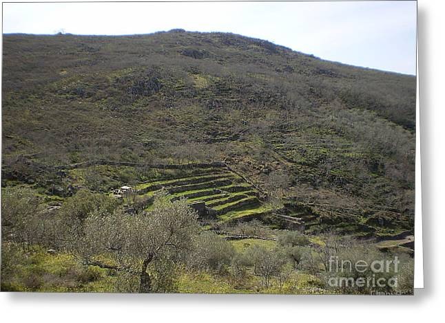Extremadura Greeting Cards - Mountain terraces in Extremadura Greeting Card by Chani Demuijlder