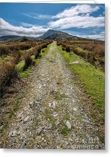 Rock Spring Trail Greeting Cards - Mountain Track Greeting Card by Adrian Evans