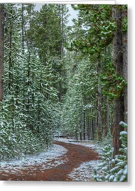 Snow Path Greeting Cards - Mountain Trail Yellowstone Greeting Card by Steve Gadomski