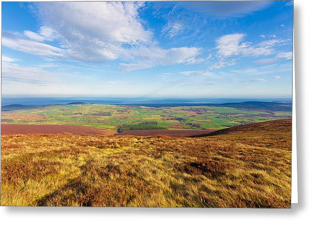 Outlook Greeting Cards - Mountain view from Djouce towards Greystones Greeting Card by Semmick Photo