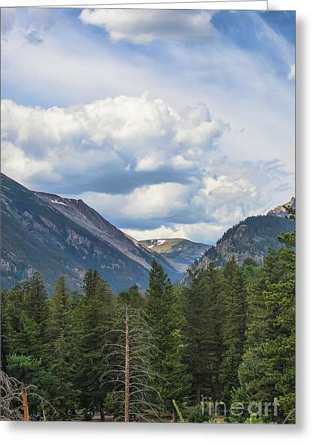 Mountain View Greeting Card by Kay Pickens