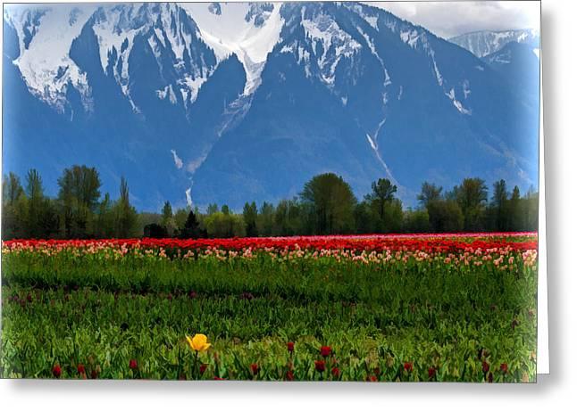 Jordan Digital Greeting Cards - Mountain View over a Field of Tulips Greeting Card by Jordan Blackstone