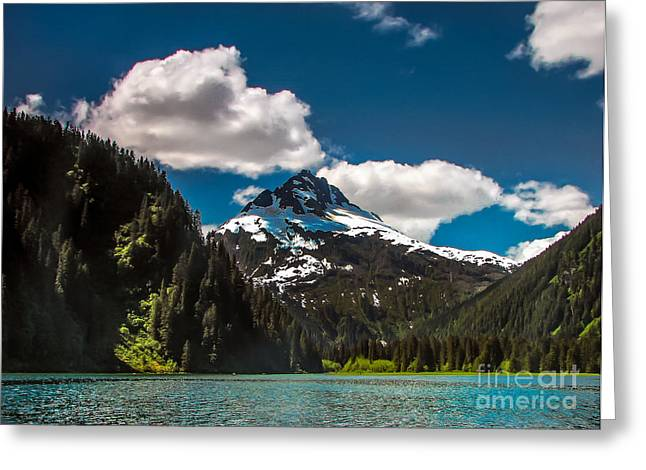 Southeast Alaska Greeting Cards - Mountain View Greeting Card by Robert Bales