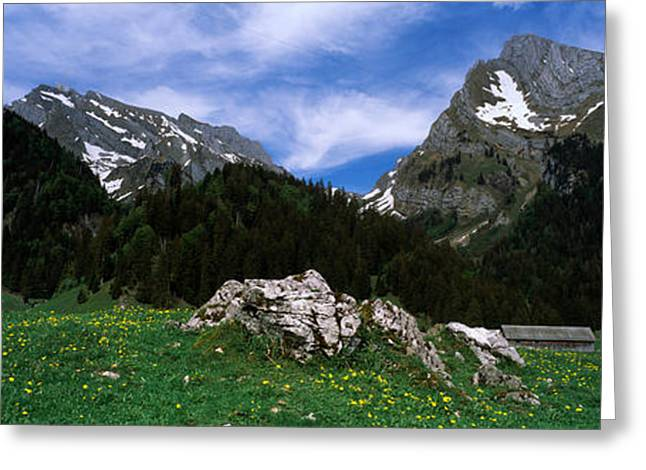 European Alps Greeting Cards - Mountains In A Forest, Mt Santis, Mt Greeting Card by Panoramic Images