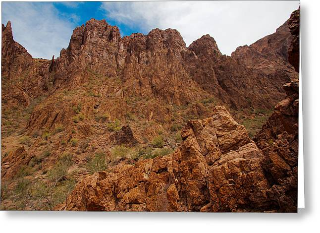 Wildlife Genre Greeting Cards - Mountains in Arizona Greeting Card by Ed  Cheremet